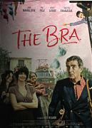 THE BRA - IL REGGIPETTO